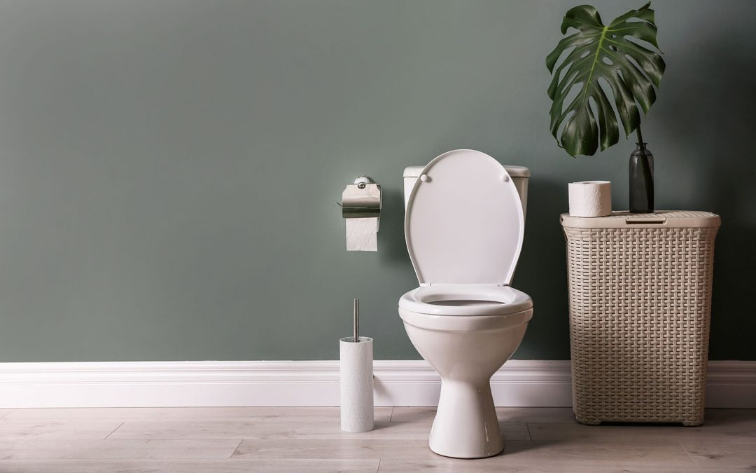 Replace Your Toilet: A Guide of Options