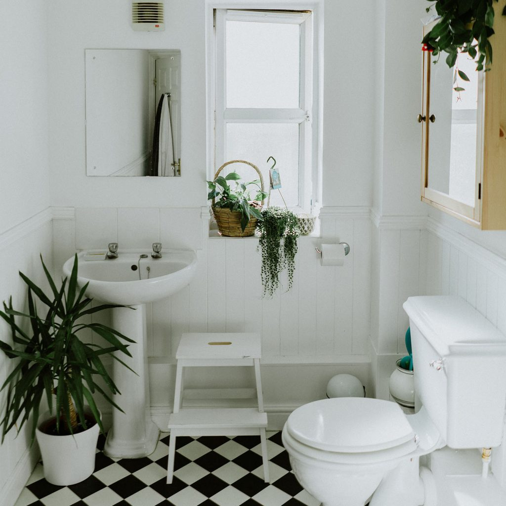 Small Bathroom with Greenery